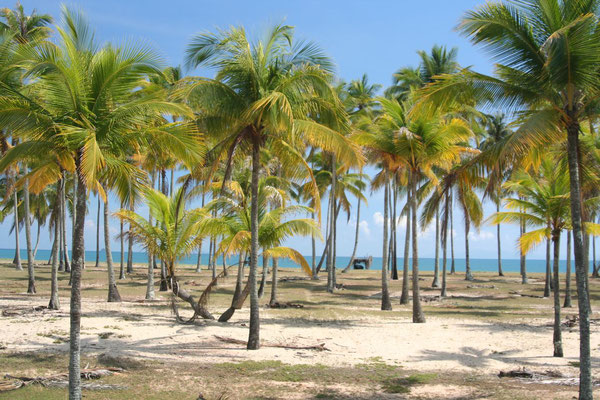 Kuala Setiu Baharu - Malaysia East Coast