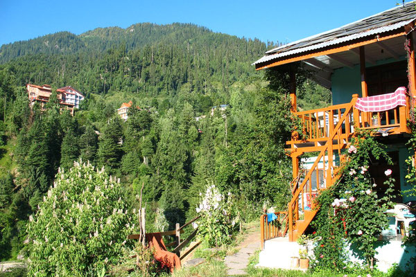 Viewpoint Guesthouse - Old Manali - Himachal Pradesh