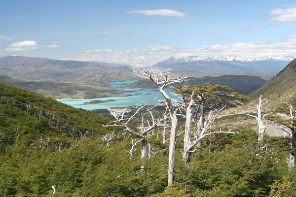 French Valley - Torres del Paine National Park