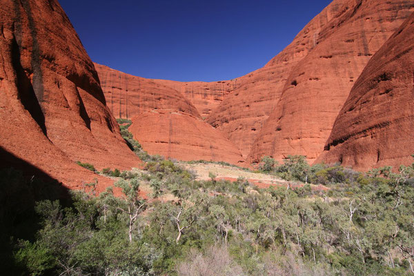 Valley of the Winds - Kata Tjuta - Northern Territory