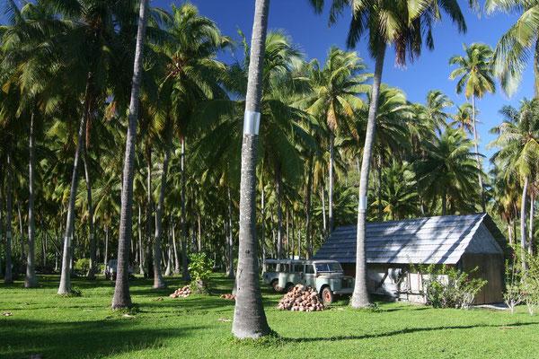 Polynesian home - Mo´orea