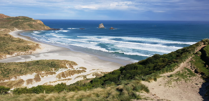 Sandfly Bay - Dunedin Peninsula - South Island