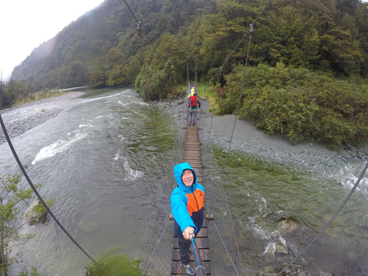 Hollyford Track - Fiordland Nationalpark - South Island