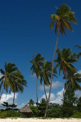 Bwejuu Beach - Southeastern Zanzibar Island