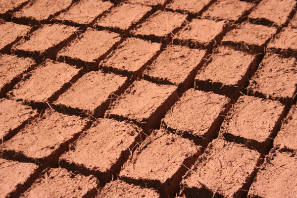 Drying bricks - Northern Yunnan Province