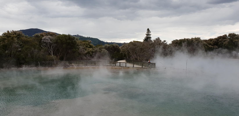 Rotorua Volcanic Hot Springs - North Island