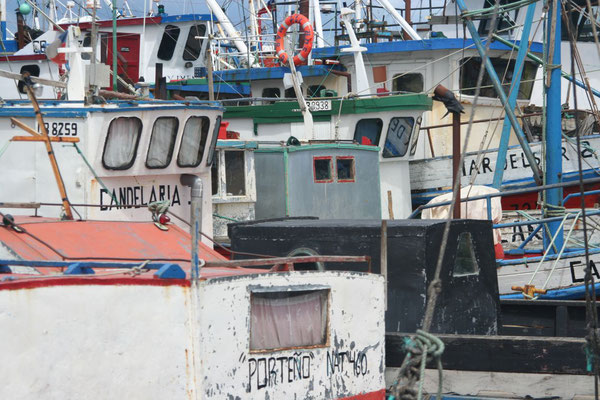 Fishing boats - Puerto Natales