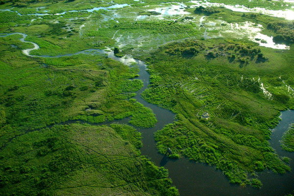 Scenic flight over Okavango Delta