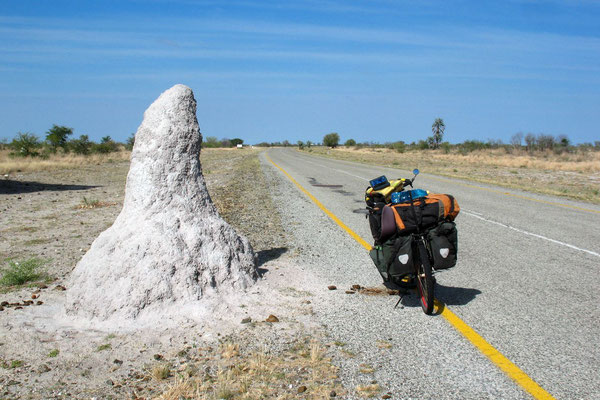 Giant anthill - East of Motopi