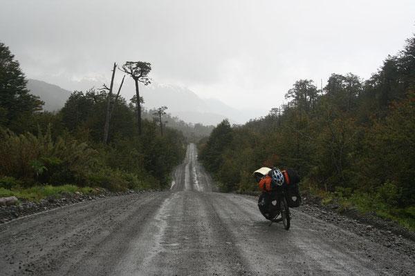 Northern Carretera Austral - Los Lagos Province