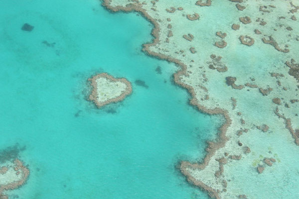 Heart Reef - Great Barrier Reef - Queensland