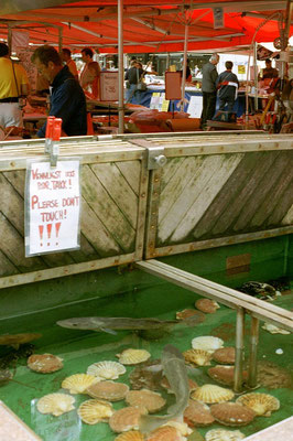 Fish Market - Bergen - Western Norway