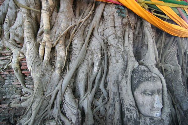 Ayutthaya - Central Thailand
