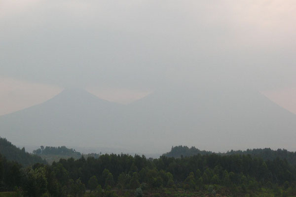 Virunga Volcanos - Home of the Mountain Gorillas - Congo