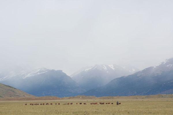Southern Los Glaciares National Park