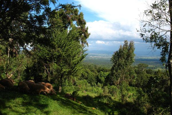Southwestern Kenya