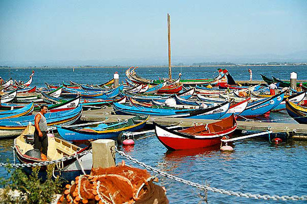 Traditional fishing boats - South of Porto
