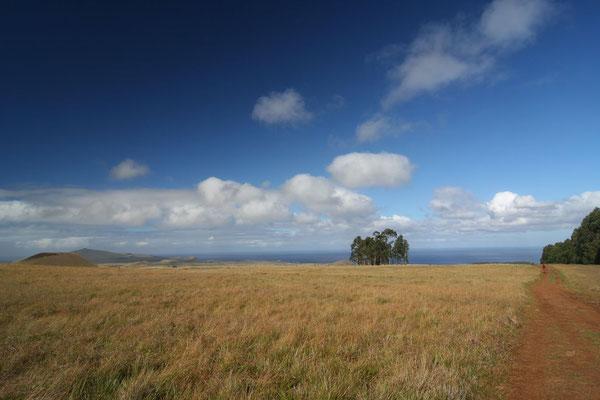 View from Maunga Terevaka - Rapa Nui West Coast