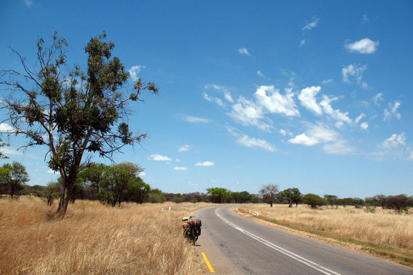 Cycling Highway 5 - West of Gweru