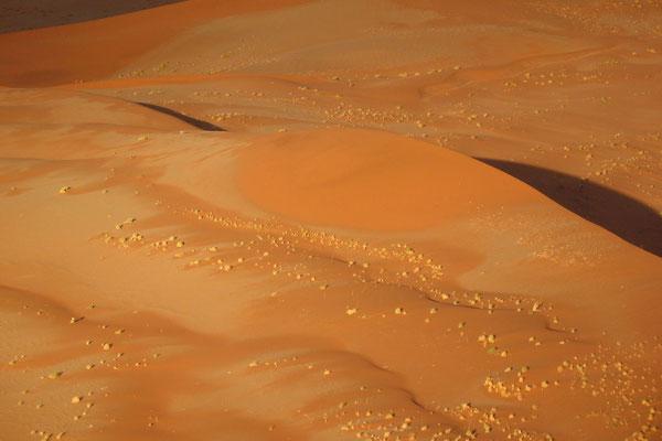 Sossusvlei Sand Dunes - Namib Desert