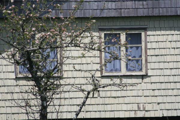 Housefront in Chacao - Isla Grande de Chiloé