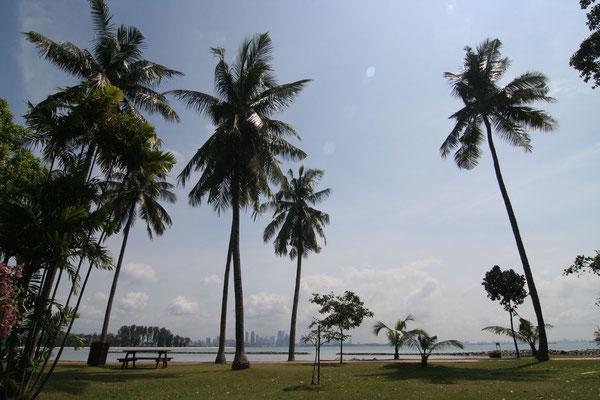 Turtle Island - Singapore