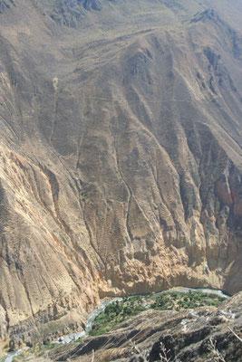 Canon de Colca - Cordillera de Chilla