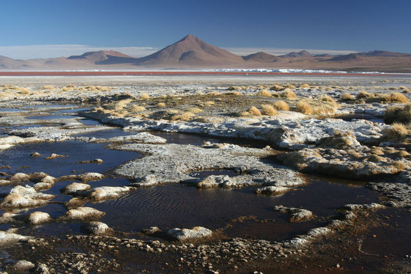 Laguna Colorada - Southern Potosi Province