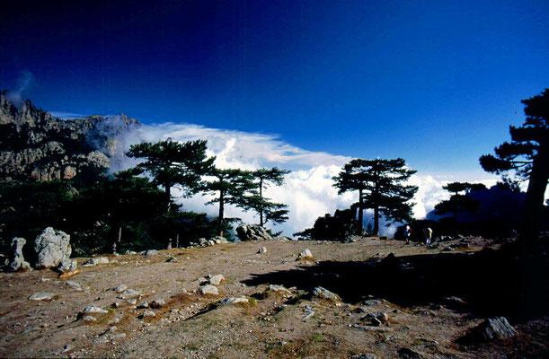 Col de Bavella 1,218 m - Southeastern Corsica