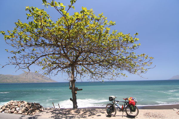 Cycling Ende Bay - Southern Flores