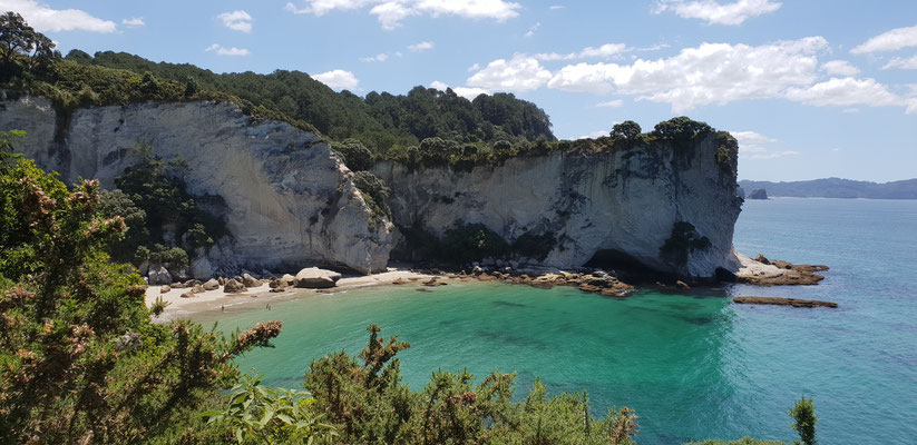 Stingray Bay - Coromandel Peninsula - North Island