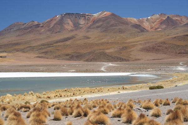 Laguna Canapa - Valles de Rocas