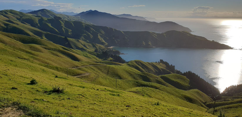 Papawai Bay - Marlborough Sounds - South Island
