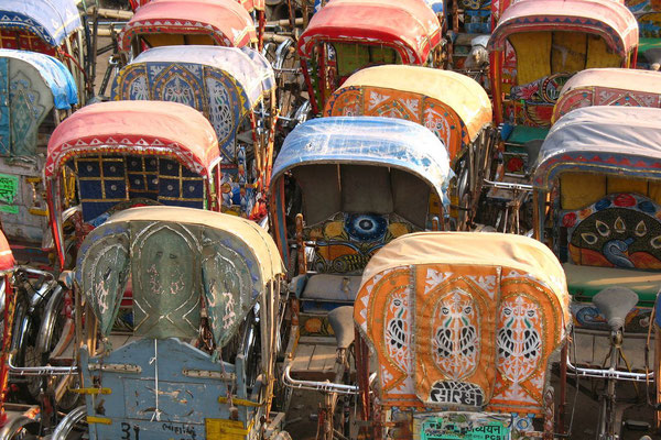 Bicycle rickshaws - Allahabad - Uttar Pradesh