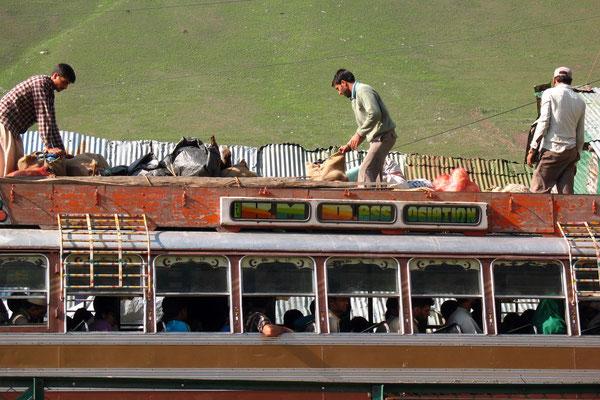 Bus travellers - Sonamarg - Kashmir