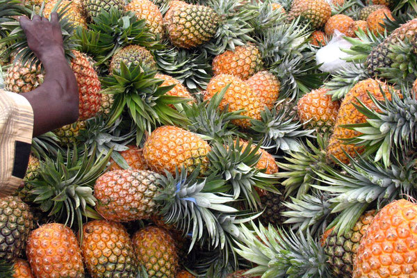 Pineapples on offer - Iganga