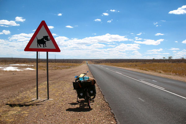 Cycling Trans Kalahari Highway