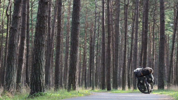 Heading north - Palanga - Lithuania