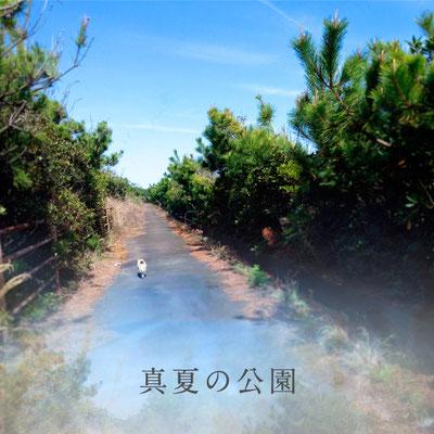 3ヶ月連続リリース配信シングル第三弾「真夏の公園」ジャケット