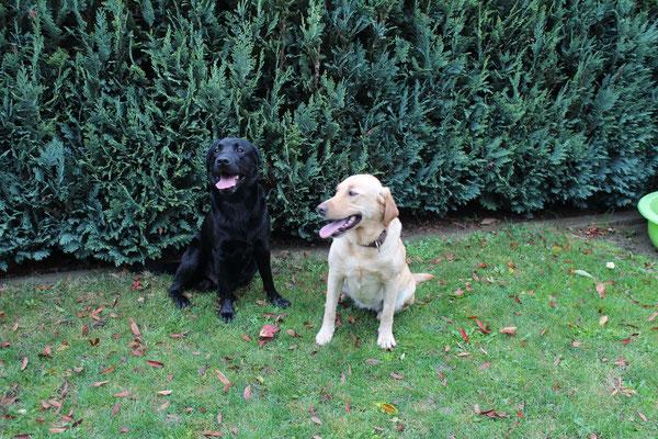 Lennox und Christa