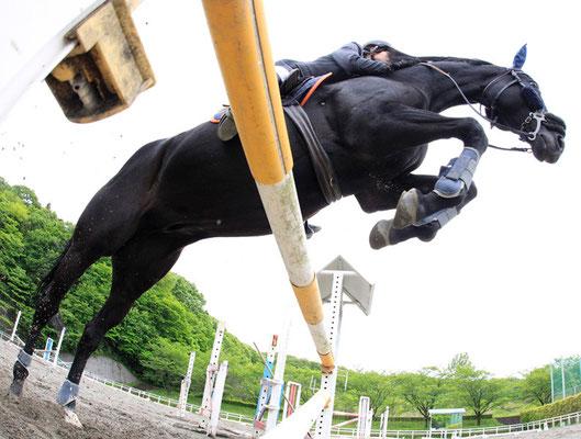 2012 Equitation at Sagamihara-shi Kanagawa