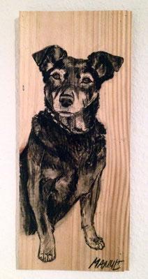 """""""Susi"""", 13 cm x 33 cm, Kohle auf Holz, 2015"""