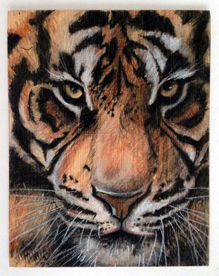 """""""Tiger Lala"""", 26 cm x 32 cm, Kohle und Wachsstifte auf Holz, 2015"""