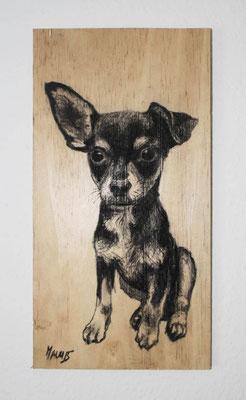 """""""Chihuahua"""", 16 cm x 31 cm, Kohle auf Holz, 2015 ___CHF 120.-"""
