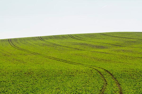 Landscape-Fotografien