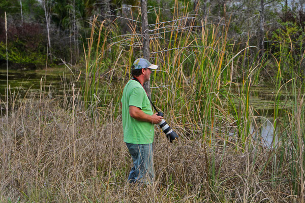 Everglades 2011