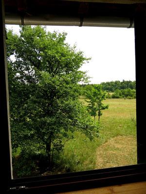 Ausblick aus dem Fenster im ersten Stock der Bakuninhütte.