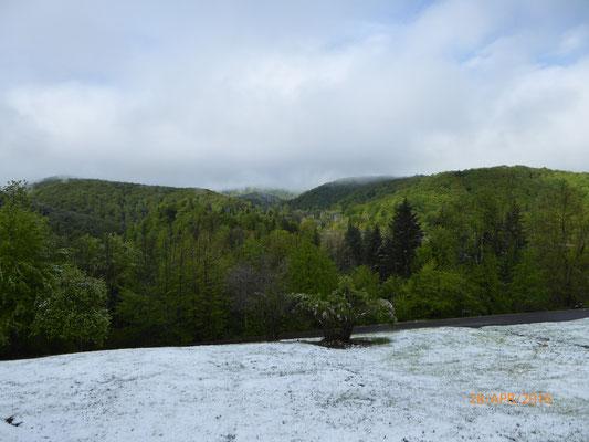Langsam schmilzt der Schnee