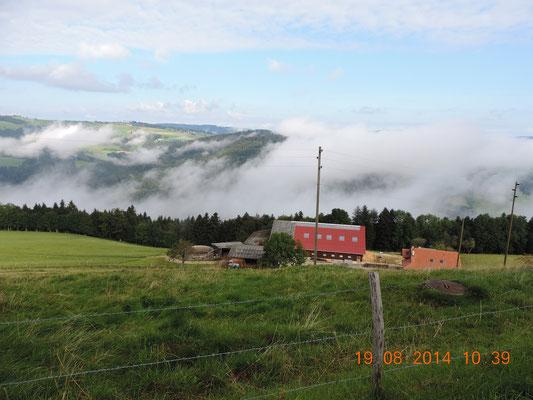 Ein wolkenverhangener Morgen