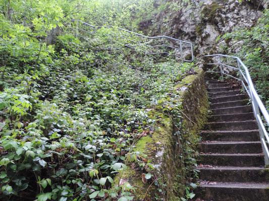 Hier war Ende und wir mussten die Treppen wieder hoch